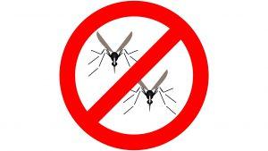 mosquitopic
