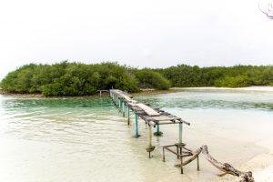 Maldives-176_IMG_8408