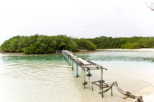 Maldives-176_IMG_8408