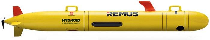 remus-100-700x135