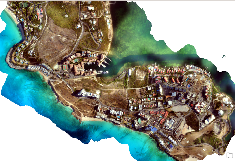 An orthomosaic generated from the drone imagery